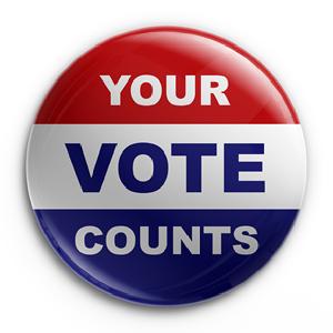 vote.2014