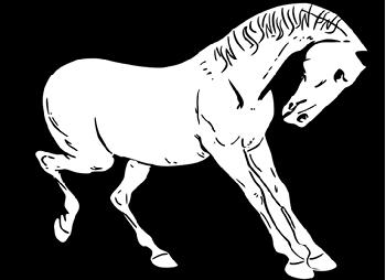 warszawianka-Prancing-horse-outline-sm