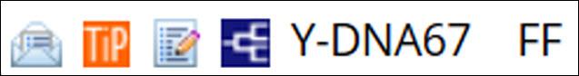 FF and YDNA