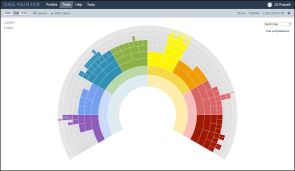 DNA Painter fan chart