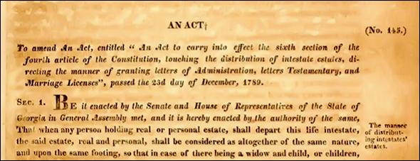 Georgia law