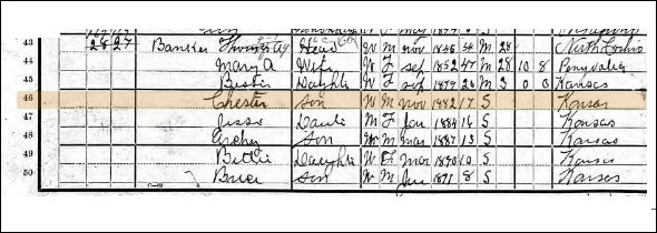 Chester in census