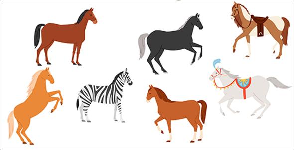 horses not zebras